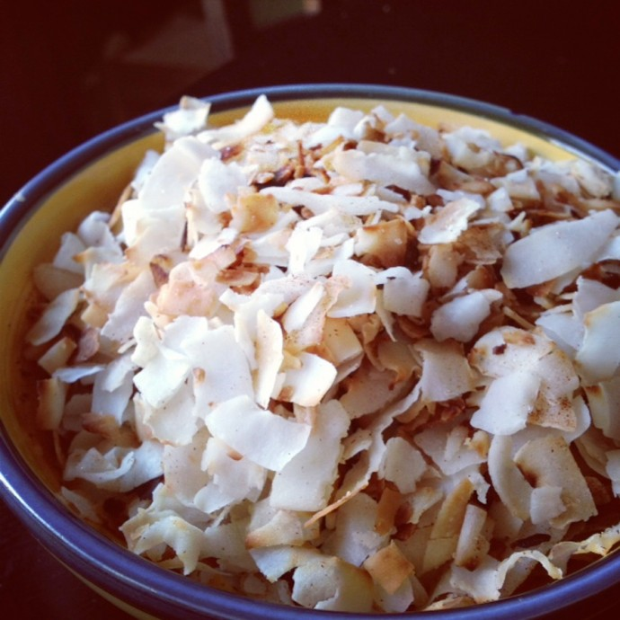 Snacky Coconut Chips